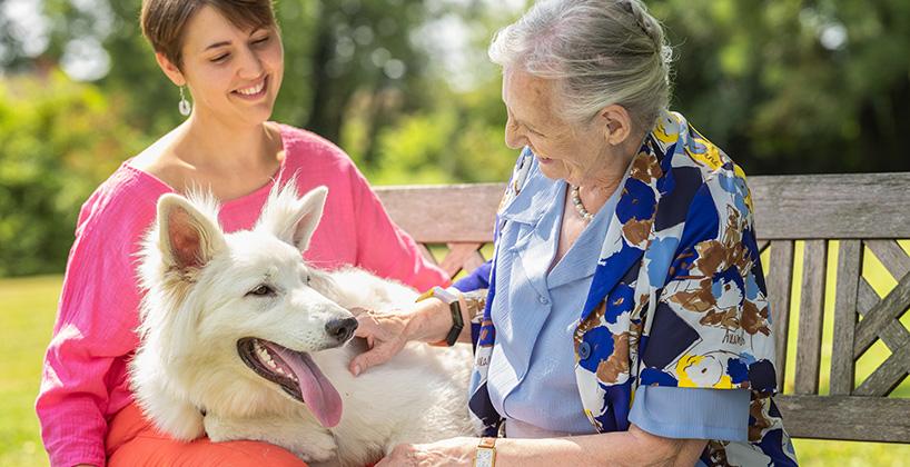 Maison de retraite zoothérapie chien